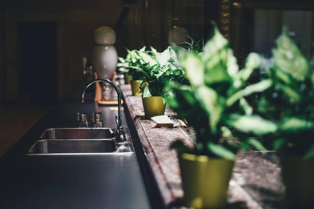 Planten in huis kunnen de boel levendiger maken