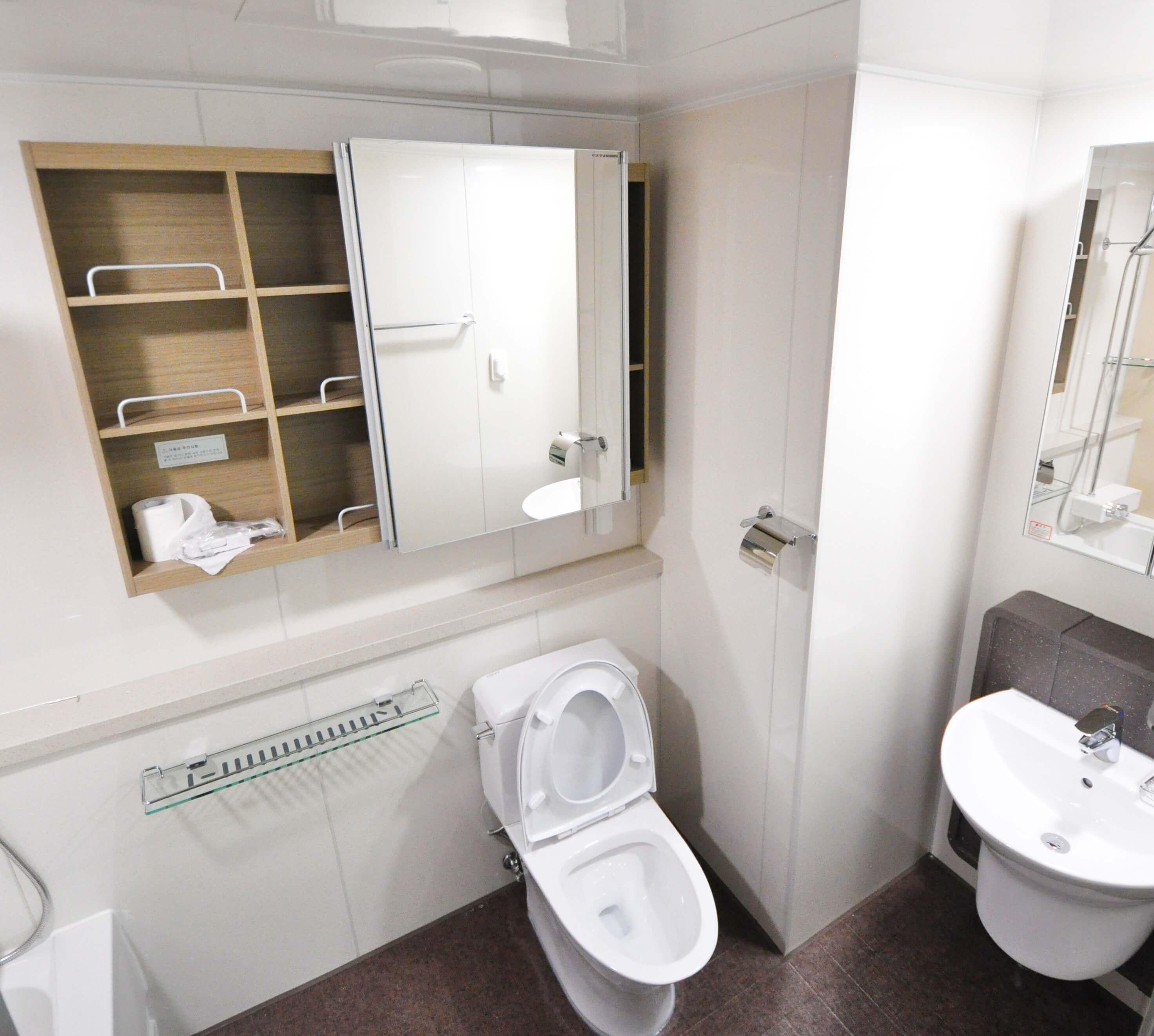last van een verstopt toilet